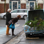 GREENHAMAR, dreamhamar, hamar, norway, ecosistema urbano