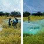 Rain Water Park, Meco, Ecosistema Urbano, Sustainable city, natural integration, resilient environment