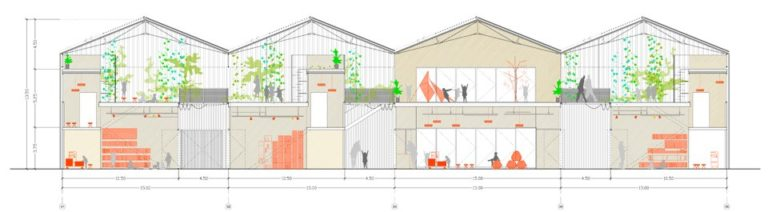 REGGIO CHILDREN SCHOOL, Section, Ecosistema Urbano