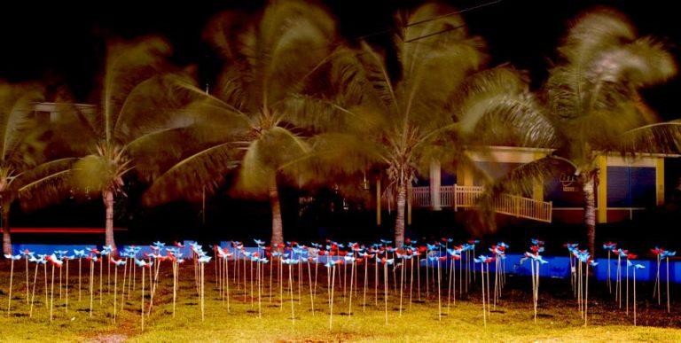 Exuma Origami garden, ideas for the city. ecosistema urbano