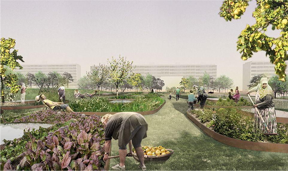 GELLERUP GROR LANDSCAPE AND URBAN REVITALIZATION, Ecosistema Urbano, AARHUS, DENMARK