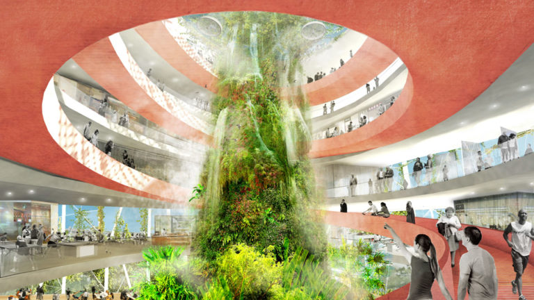 Banyan Hub Nature Courtyard